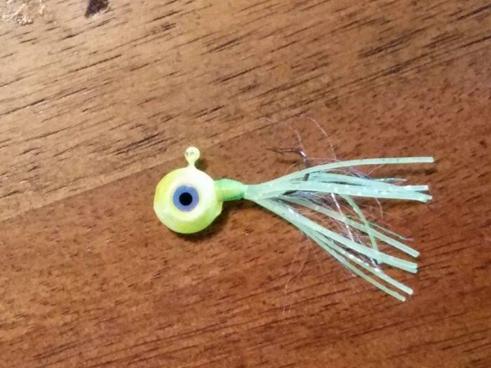 NEW....Baby Bugs