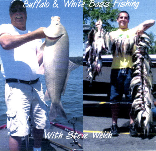 DVD - Buffalo and White Bass Fishing with Steve Welch